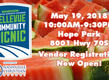 41st Annual Bellevue Community Picnic