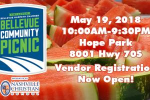 41st Annual Bellevue Community Picnic